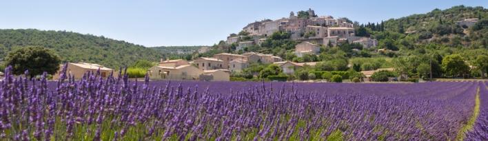 Provence - La Maison Borrelly